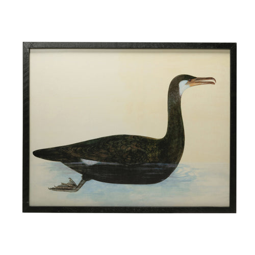 Wood & MDF Framed Wall Décor with Vintage Reproduction Bird Image, Black Default Title