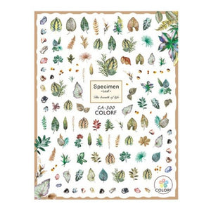 Plants Botanical Specimens Nail Stickers