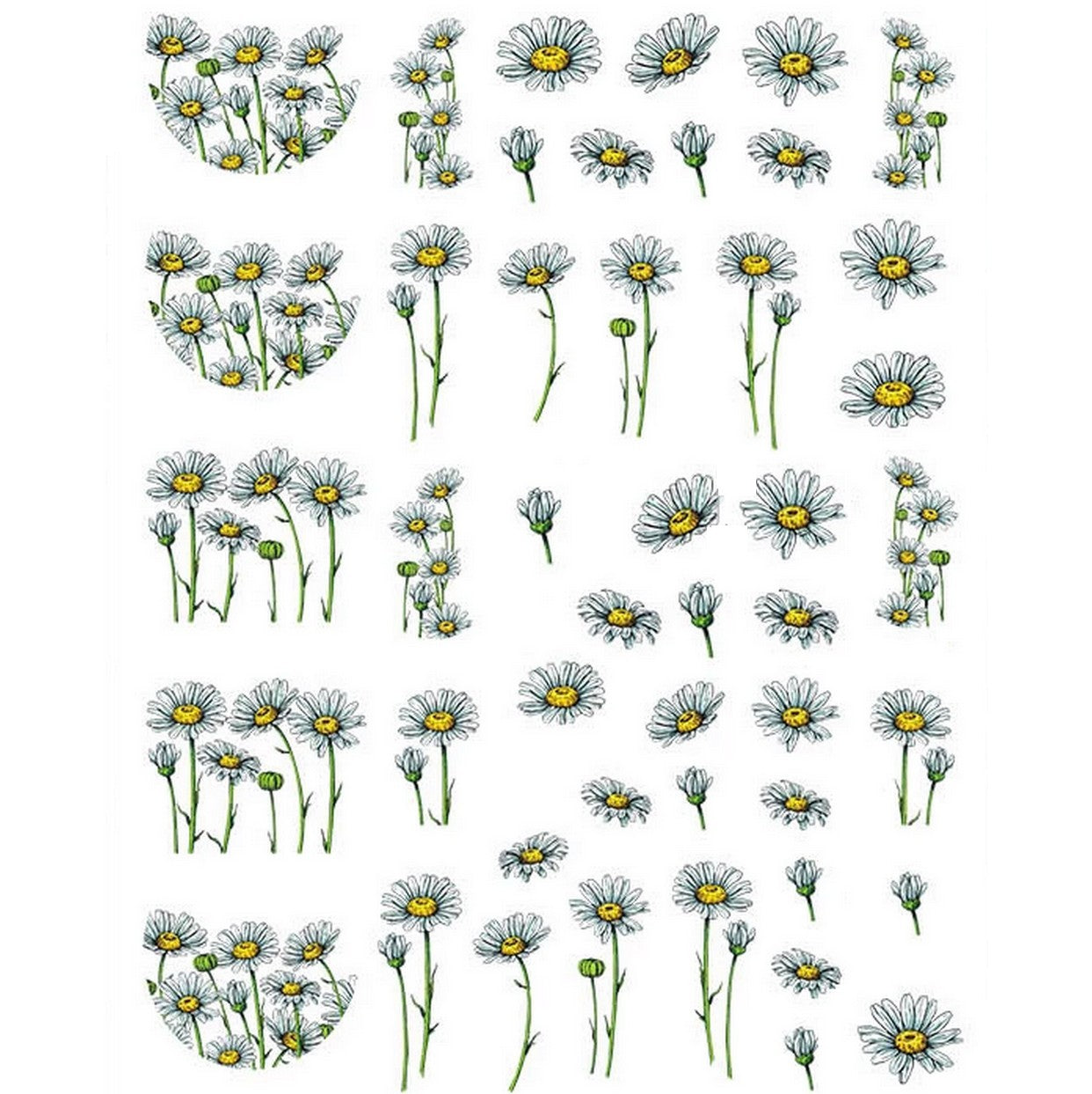 Floral Chamomile Flowers #2 Nail Stickers