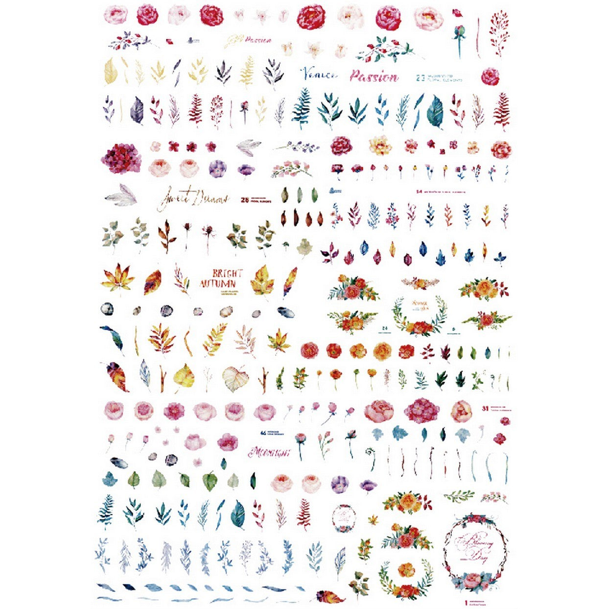 Floral Delicate Specimens Nail Stickers
