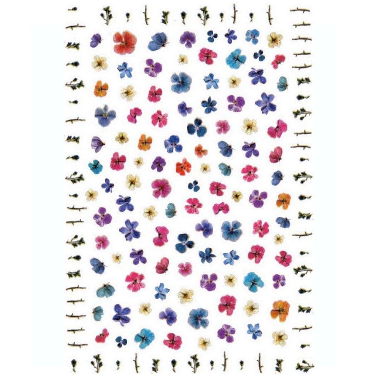Floral Delicate Dried Flowers Variety Nail Stickers
