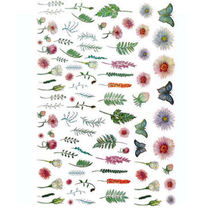 Plant Large Specimens Nail Stickers