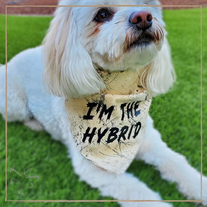 I'm the Hybrid - Pet Bandana