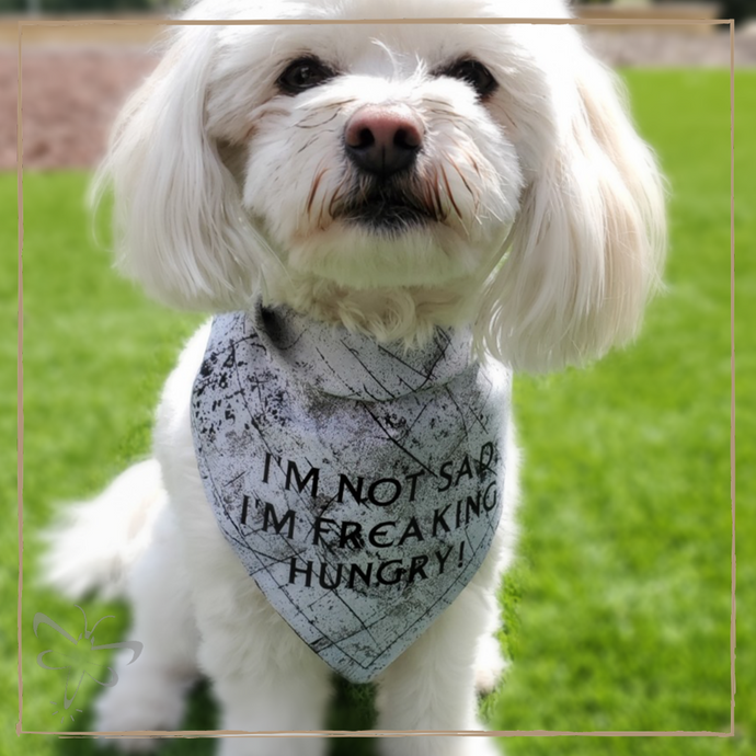 I'm Not Sad I'm freaking Hungry - Pet Bandana