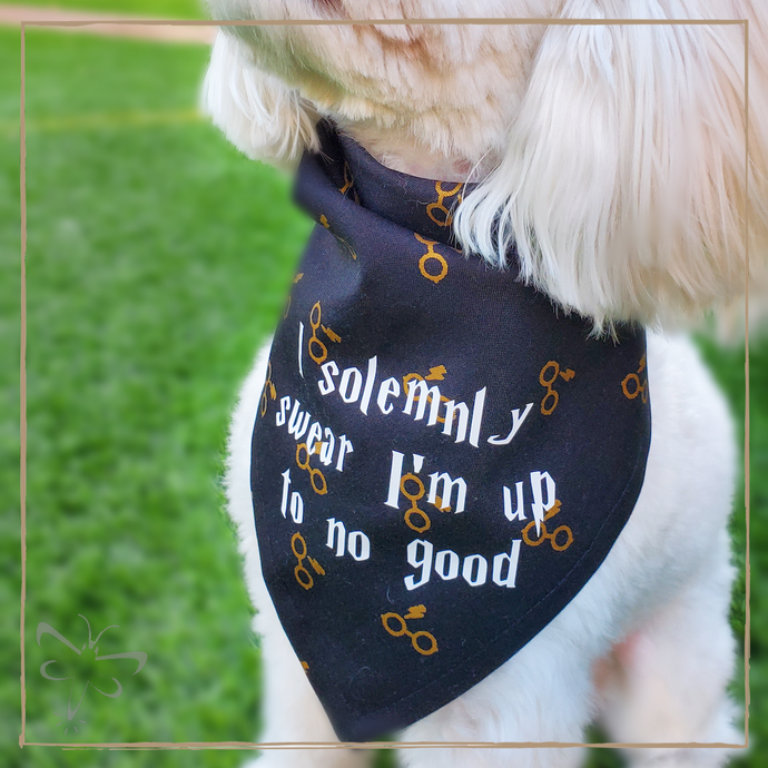I Solemnly Swear I'm Up To No Good - Pet Bandana