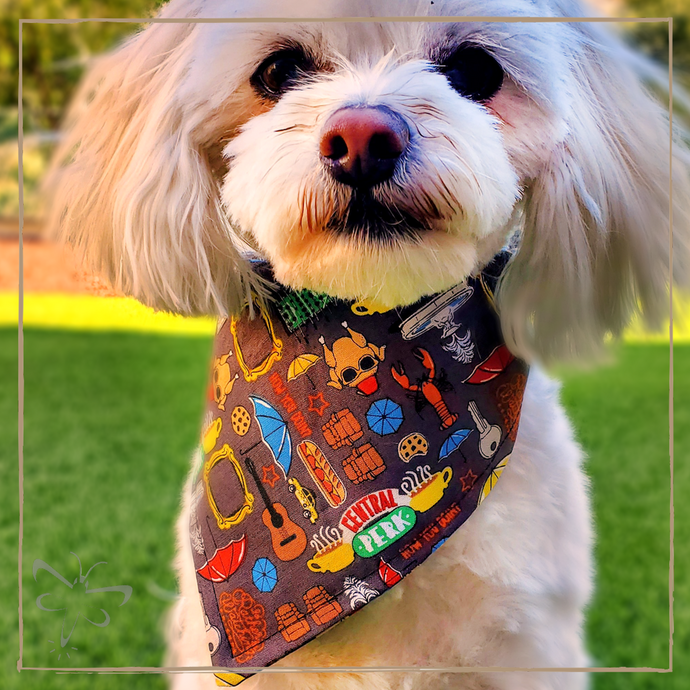 Central Perk - Pet Bandana