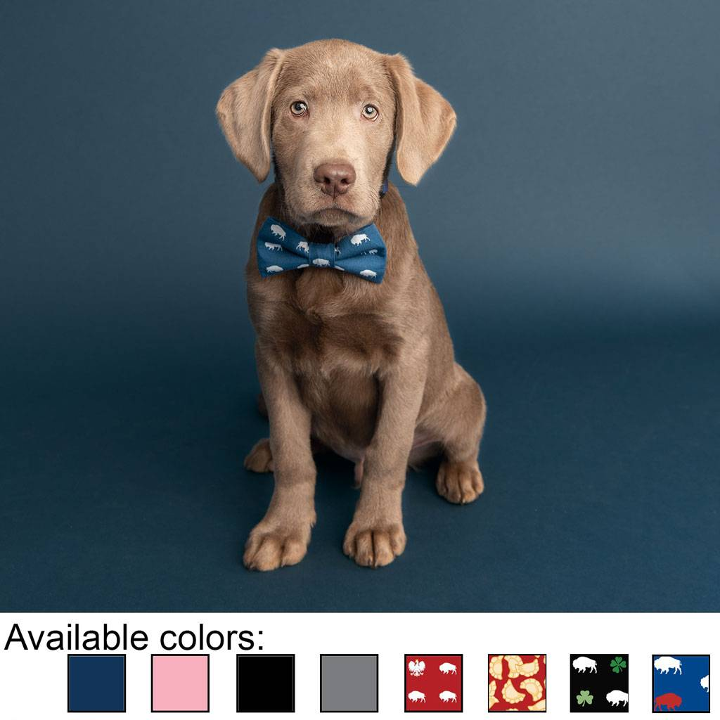 Buffalo Dog Bow Tie