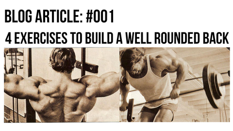 arnold schwarzenegger 4 back building exercises to gain muscle