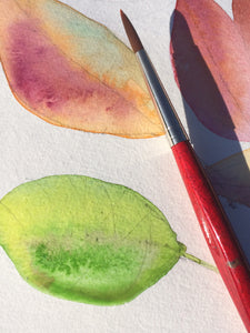 Two leafs watercolor detail