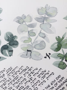 Watercolor Eucalyptus Ray < Trilingual Ketubah Artwork Commission