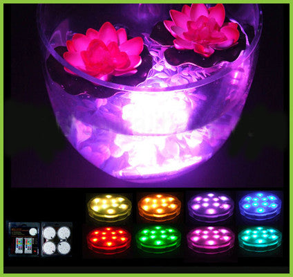 Submersible LED Light