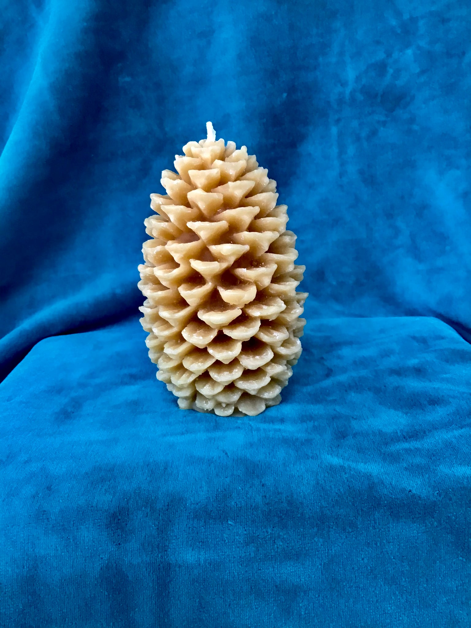 Medium Pinecone