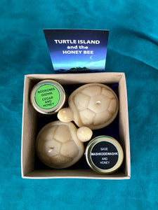 Medium Turtle Gift Box
