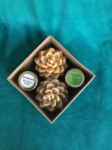 Large Pinecone Gift Box