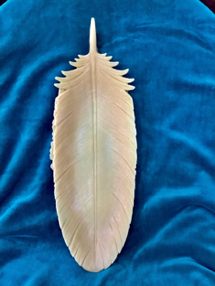 Coffee Table Feather