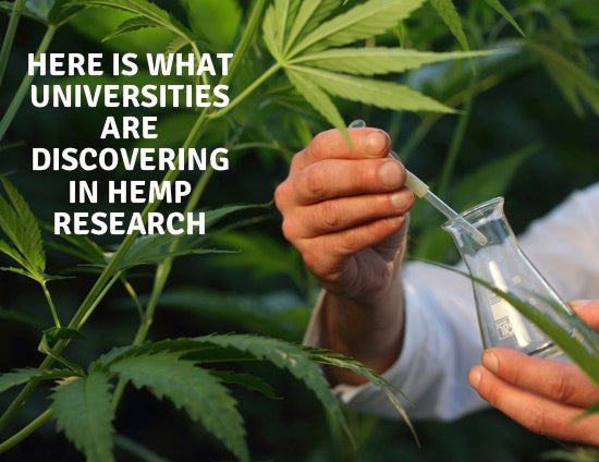 This is What Our Universities are Learning About Hemp & CBD