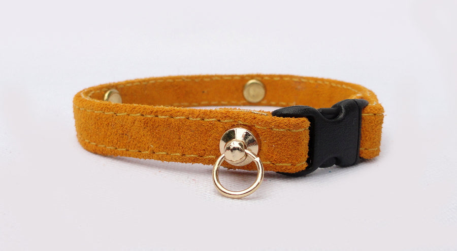 Cat Collar Personalized Buffed Suede with Engraved Plate (sample gold)
