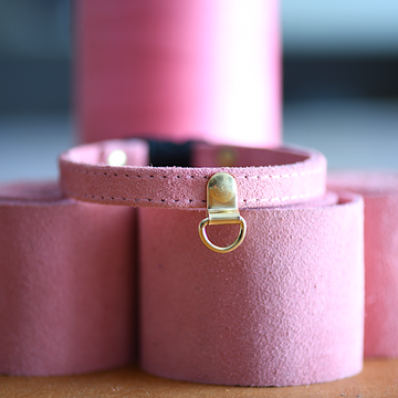 Soft  Suede Cat Collar with Charm Holder