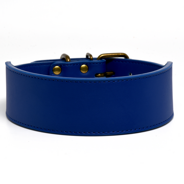 Royal Blue Leather Dog Collar in 2 Inch Wide