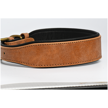 Brown Black Leather Dog Collar in 2 Inch Wide