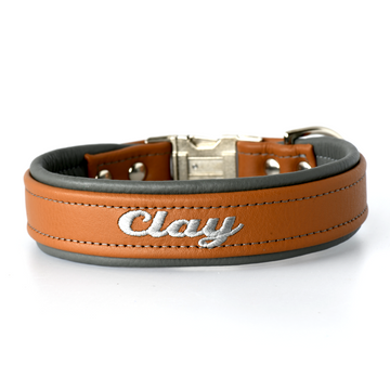 Padded Dog Collars Leather One and Half Inch (1.5 inch) Wide Tapered down to One Inch Buckle