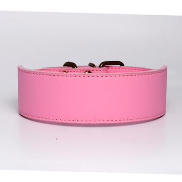 Pink Leather Dog Collar in 2 Inch Wide