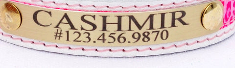 Flamboyant Cat Collar - (with sample White leather and #15 ribbon/suede choice)