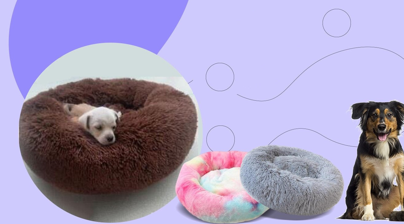 How to Choose the Right Dog Bed