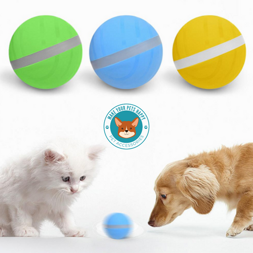 Motion ball For Dogs & Cats