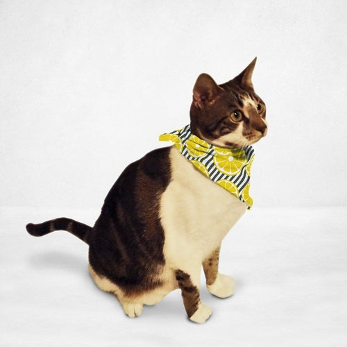 Fresh Lemons Cat & Dog Bandana
