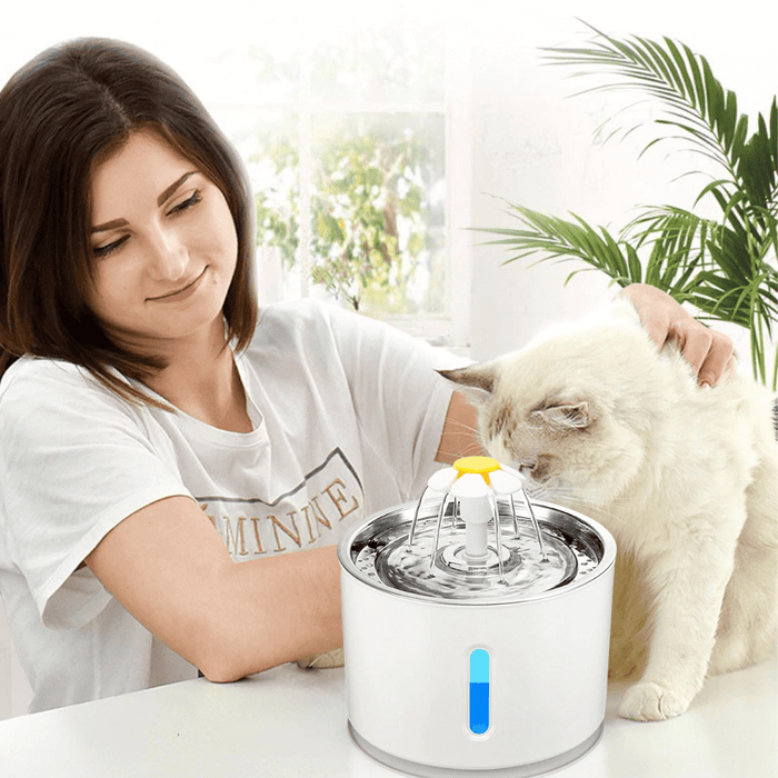 Pet Drinking Water Dispenser
