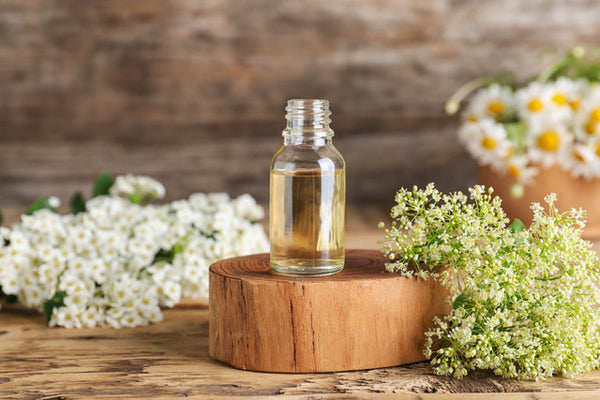 The Benefits of Black Currant, Elderflower and Other Botanical Skincare Ingredients