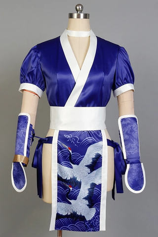 Doa Dead Or Alive Kasumi Cosplay Costume
