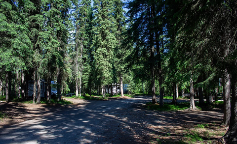Tanana Valley Campground Lifestyle Image