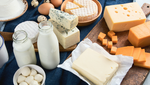 Introduction to Cheese Making