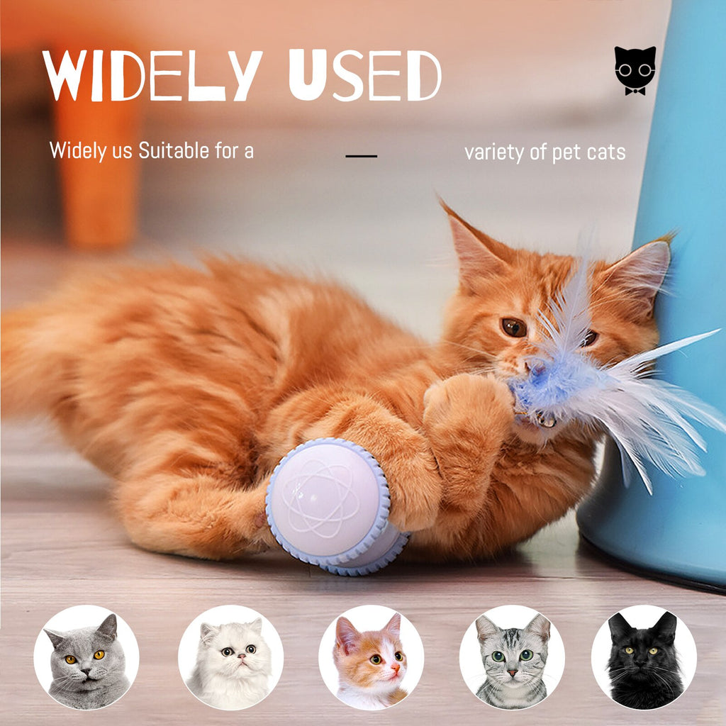 Clever & Stylish Robotic Toy for Pets Kitten | HIGH QUALITY