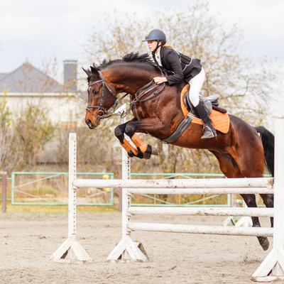 3 Health Benefits of Horse Riding