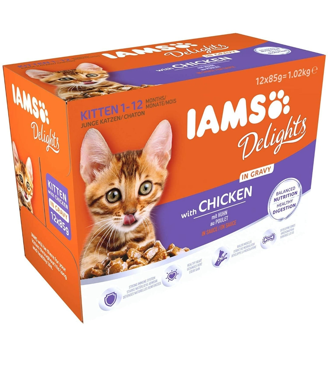 IAMS Delights Wet Cat Food for Kittens 12 x 85g | Chicken, Cat Food by Dog In A Box