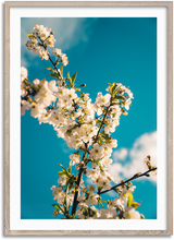 Load image into Gallery viewer, Flower Power