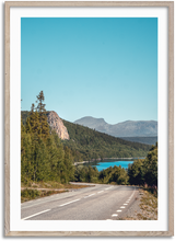 Load image into Gallery viewer, Forest Road