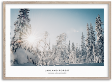 Load image into Gallery viewer, Lapland Forest