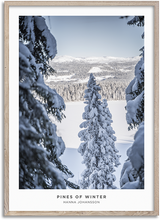 Load image into Gallery viewer, Pines Of Winter