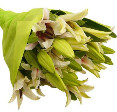Oriental Lilly Bouquet