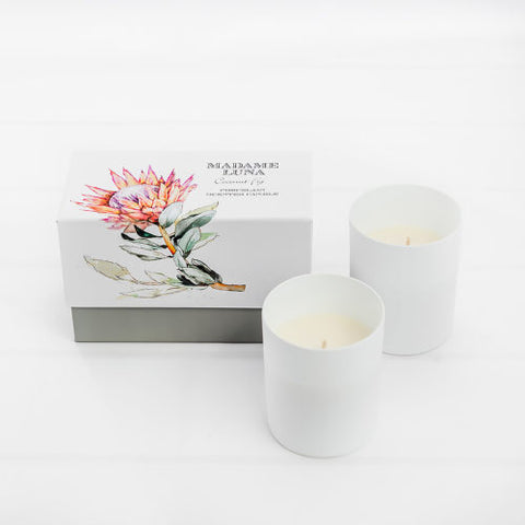 Tuberose Musk Porcelain Scented Candles (2 in a gift box)