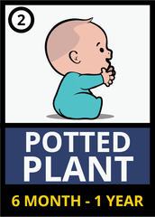 Mounts - Phases - Potted plant