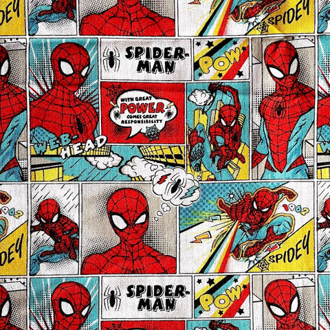 Fabric Face Mask (Spider-Man POW)