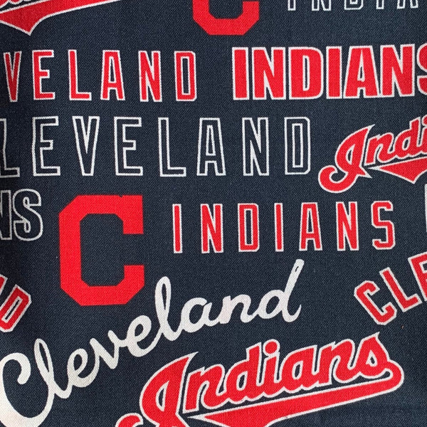 Fabric Face Mask (CLE Indians)