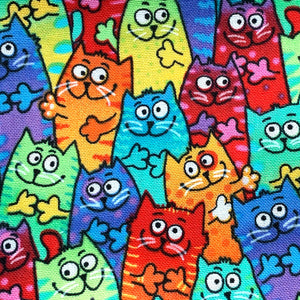 Fabric Face Mask (Rainbow Cats)