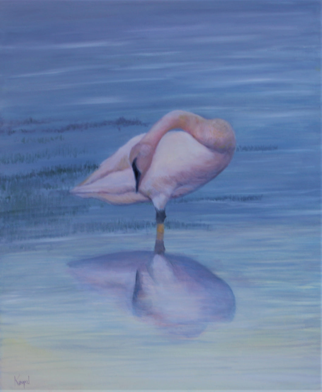 Limited Edition Print - Swan Dream, 24x30, Fine Art Matte 310g Paper