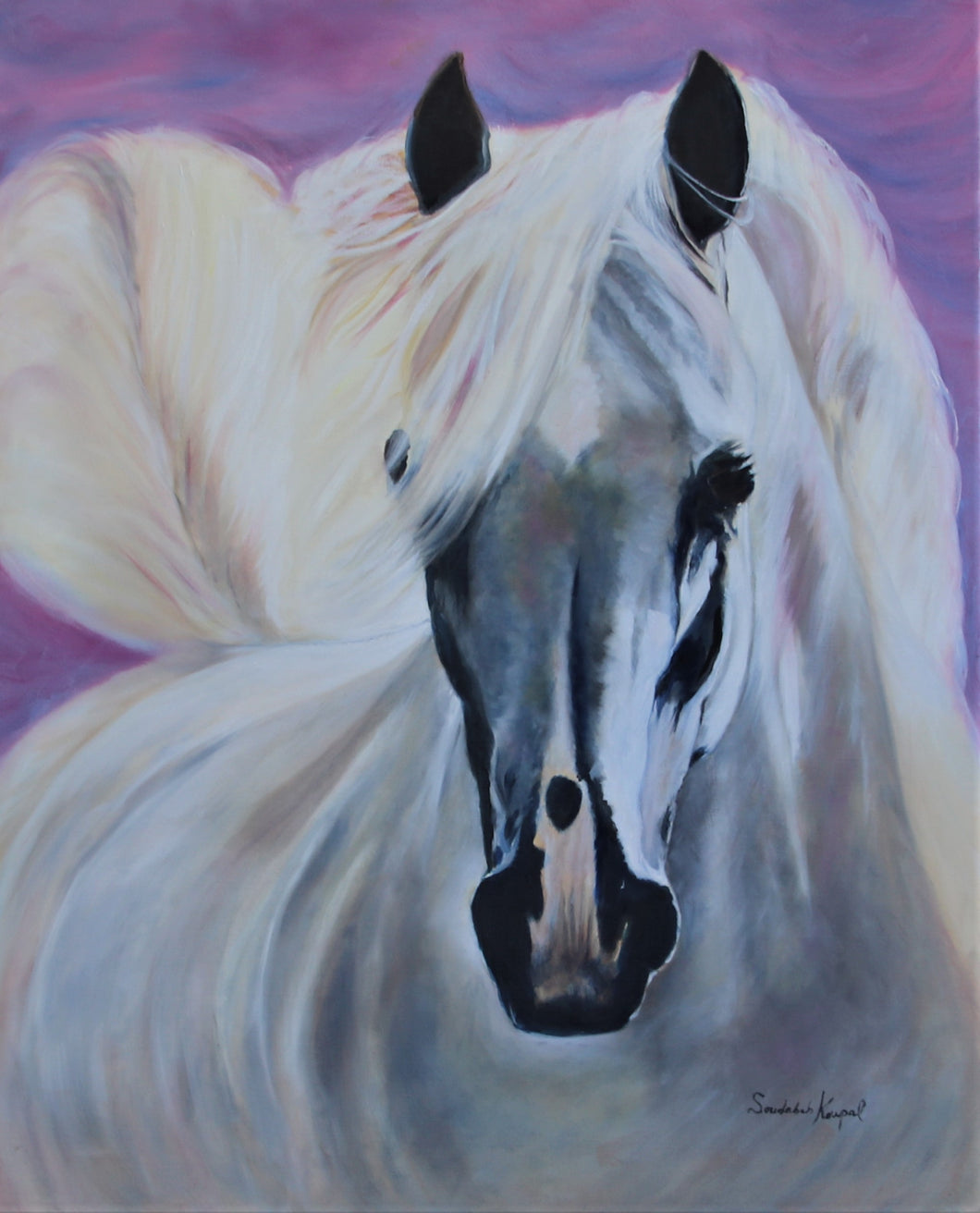 Greeting Card- White Horse